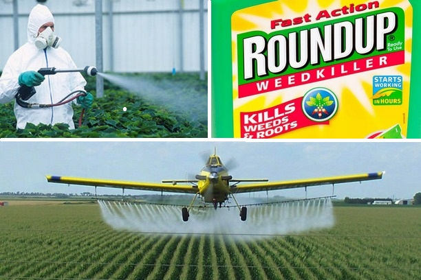France Bans the World's Leading Herbicide From Garden Stores