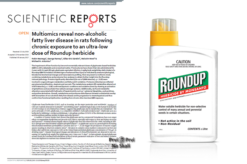 Multiomics reveal non-alcoholic fatty liver disease in rats following chronic exposure to an ultra-low dose of Roundup herbicide